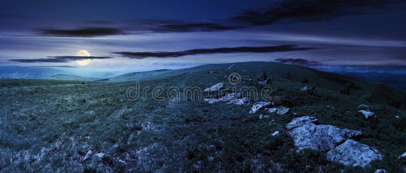 Panorama van Karpatische alpiene weiden bij nacht royalty-vrije stock foto