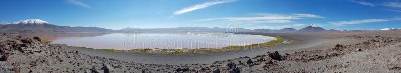 Panorama van Laguna Colorada een gekleurd ondiep zout meer in het zuidwesten van altiplano van Bolivië stock foto