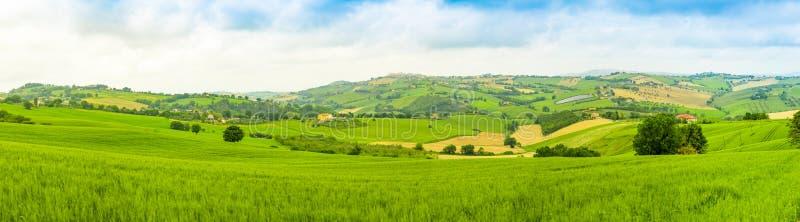 Panorama van Landelijk Landschap bij de zomergebieden in het Italiaans provincie van Ancona in Italië royalty-vrije stock afbeeldingen