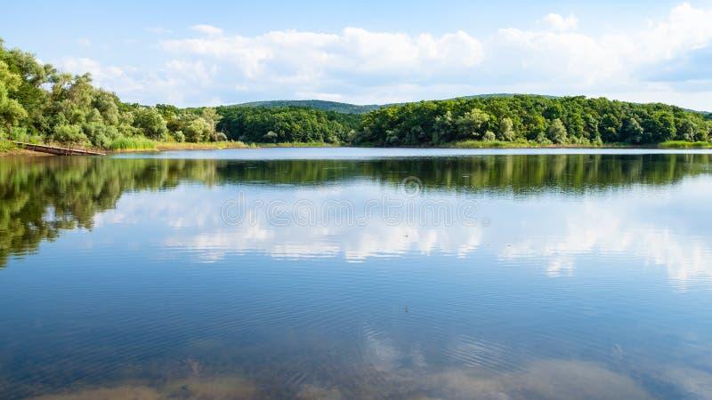 panorama van meer in bos in kalme avond royalty-vrije stock afbeeldingen