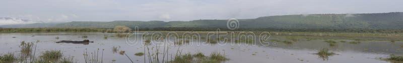 Panorama van Meer Manyara, Tanzania stock foto