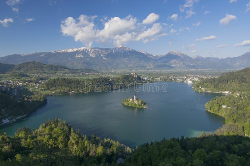 Panorama van Meer van Weinig Osojnica-Heuvel, Slovenië wordt afgetapt dat royalty-vrije stock foto