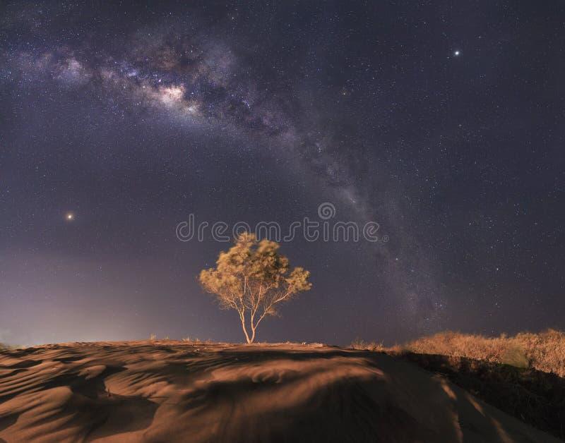 Panorama van Melkwegmelkweg met de achtergrond van nachthemel en sterren, in de woestijn stock afbeelding