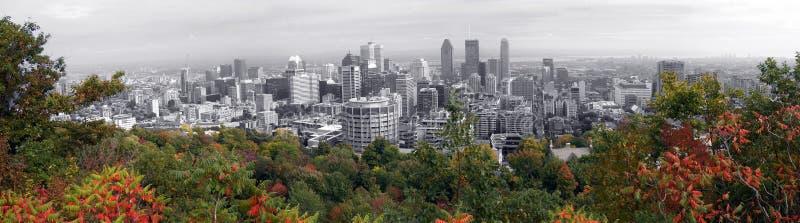 Panorama van Montreal stock afbeeldingen