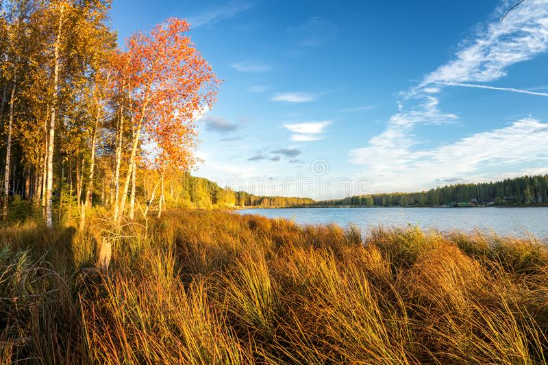Panorama van mooi de herfstlandschap met meer en bos op de Bank van Rusland, het Oeralgebergte stock afbeeldingen