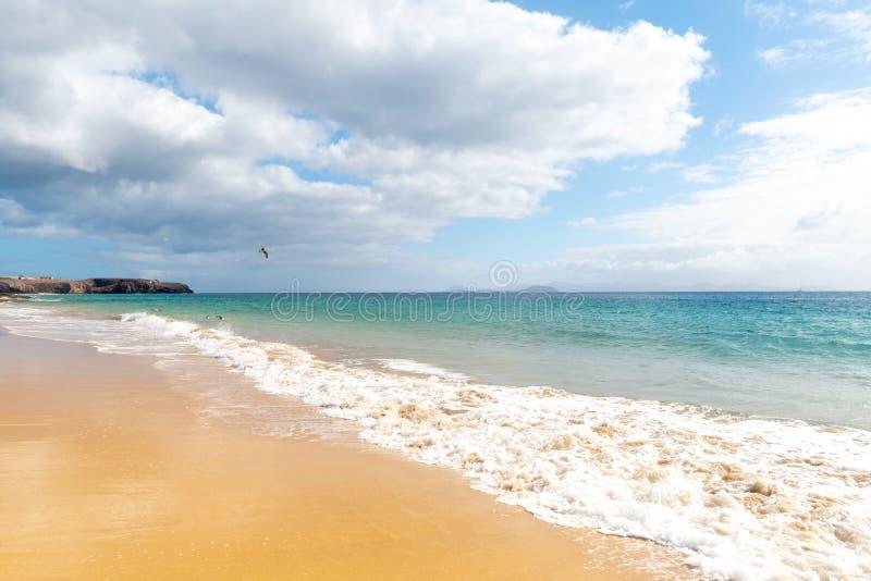 Panorama van mooi strand en tropische overzees van Lanzarote kanaries stock fotografie