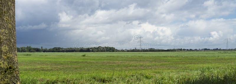 Panorama van Nederlandse weide met grasgebied en hoogspanningstoren in Bleskensgraaf, Nederland stock afbeeldingen