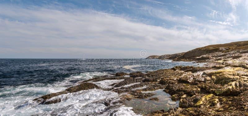 Panorama van oceaankust stock afbeeldingen