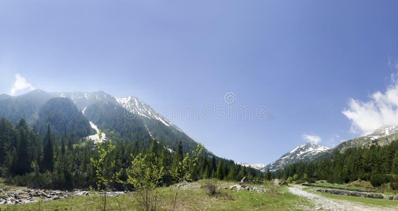 Panorama van Pirin-bergketen met Vihren stock fotografie