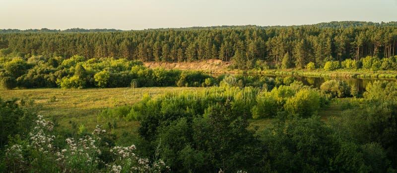 Panorama van rivier Neris en bossen in Litouwen royalty-vrije stock foto