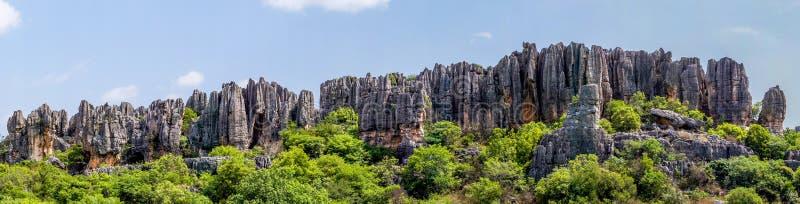 Panorama van Shilin-de Steenbos van kalksteentoppen - Yunn royalty-vrije stock afbeelding
