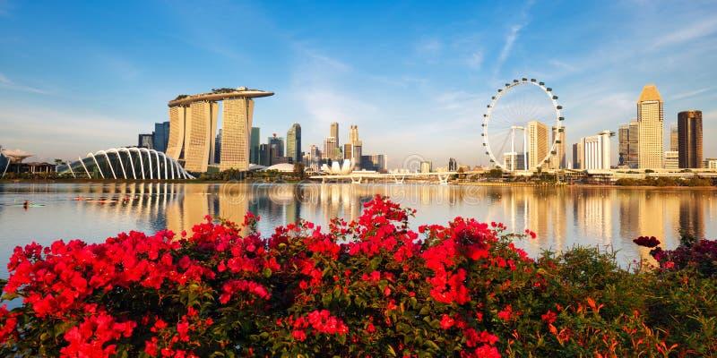 Panorama van Singapore-stad op dag met bloemen stock foto