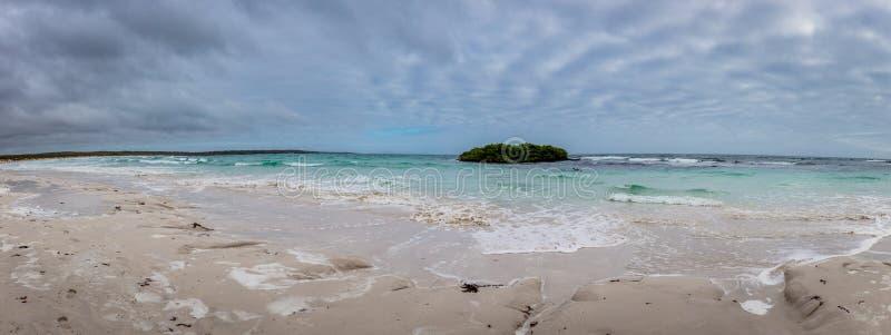 Panorama van strand in Santa Cruz Galapagos, Ecuador stock afbeelding