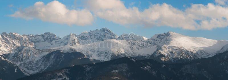 Panorama van Tatra-Berg stock foto's