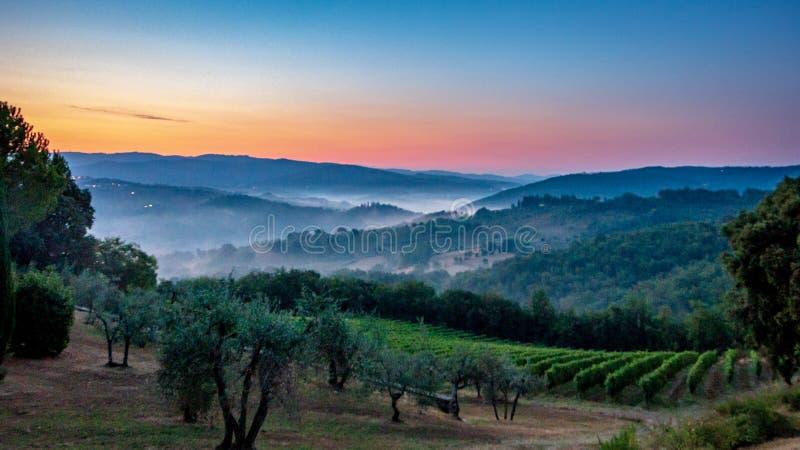 Panorama van Toscaanse die wijngaard in mist bij de dageraad dichtbij Castellina in Chianti, Italië wordt behandeld stock afbeeldingen