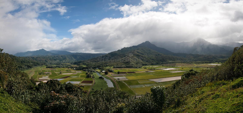 Panorama van Vallei Hanalei op Kauai stock foto's