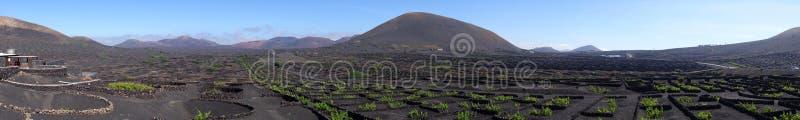 Panorama van Wijnbouw in La Geria op het Eiland Lanzarote, Canarische Eilanden royalty-vrije stock fotografie