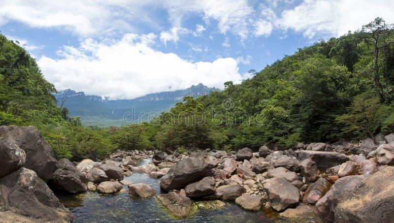 Panorama van wild rivier, stenen en bos in Venezuela royalty-vrije stock afbeelding