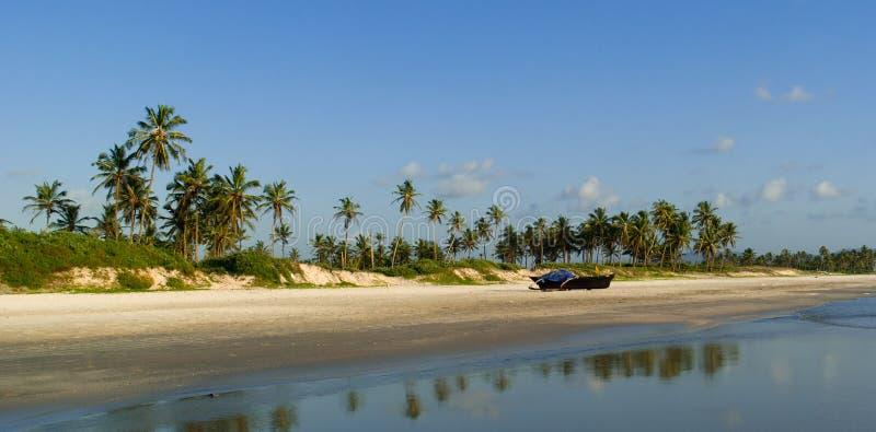 Panorama van wild strand in Zuiden Goa royalty-vrije stock foto's