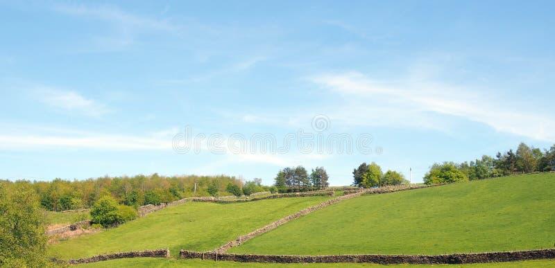 panorama van zonovergoten de zomerplatteland met groene rollende heuvelige die weiden door steenmuren en bosbomen hierboven worde royalty-vrije stock afbeeldingen