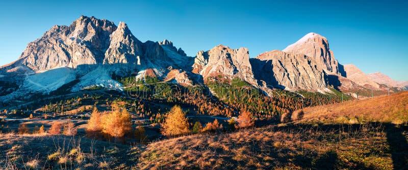 Panorama vanaf bovenkant van Falzarego-pas met Lagazuoi-berg royalty-vrije stock fotografie