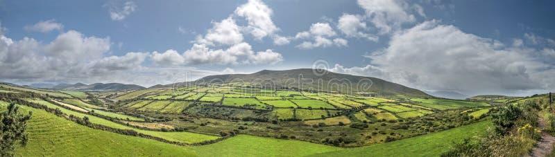 Panorama verde dos prados perto do Dingle foto de stock