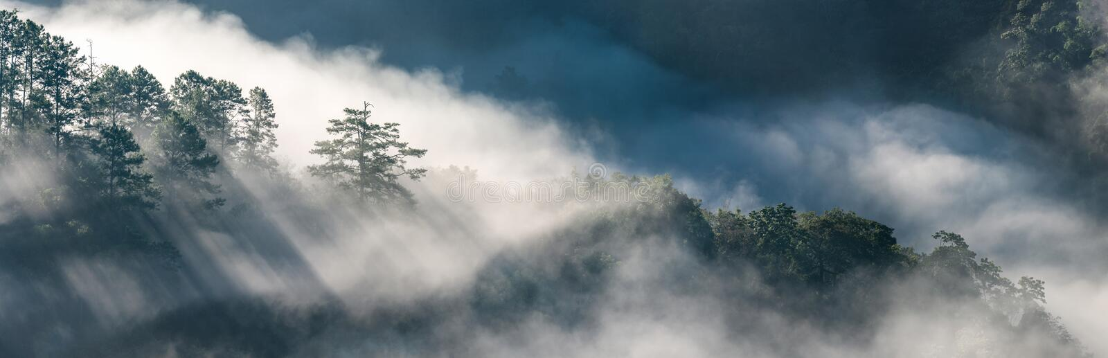 Panorama view of amazing mist moving over the nature mountains royalty free stock photography