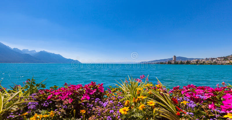Panorama view of Geneva lake and Montreux city. Panorama view of the Alps, Geneva lake and Montreux cityscape with colorful flowers in foreground on a sunny royalty free stock photo