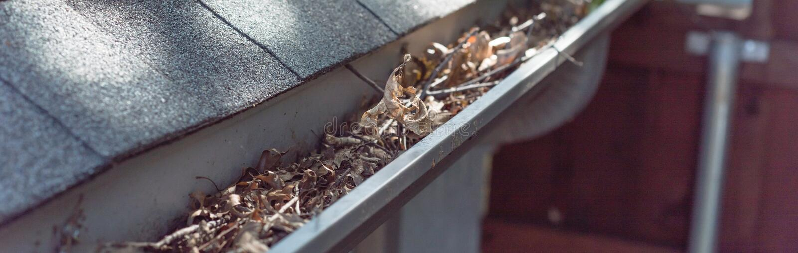 Panoramic gutter clogged by dried leaves and messy dirt need clean-up. Panorama view gutter near roof shingles of residential house full of dried leaves and stock photo