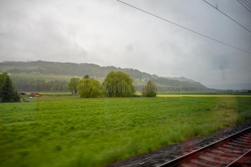 Panorama view of meadow with fresh green trees in rural area of Switzerland on cloudy sky look from train window stock photo