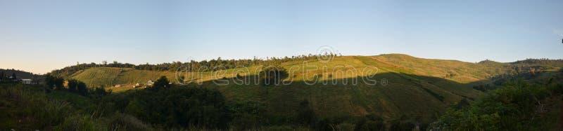 Panorama View from Phu Tub Berk, Petchabun, Thailand stock photo