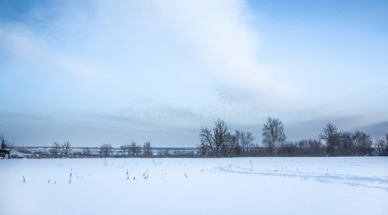 Panorama- vinterlandskap med snöfältet i bygd och träd på horisont royaltyfri fotografi