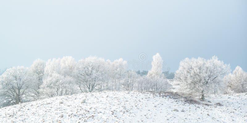 Panorama- vintersikt med snö av den holländska Posbanken i medborgare arkivfoton