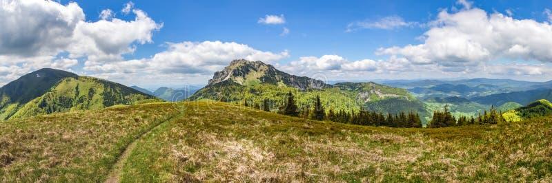 Panorama vom Frühling wenig Nationalpark Fatra, Slowakei lizenzfreie stockbilder