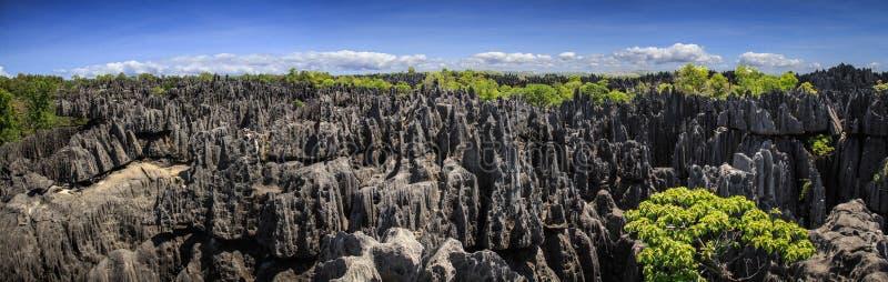 Panorama vom tsingy, Karstkalksteinbildung, Melaky-Region, Madagaskar lizenzfreies stockfoto