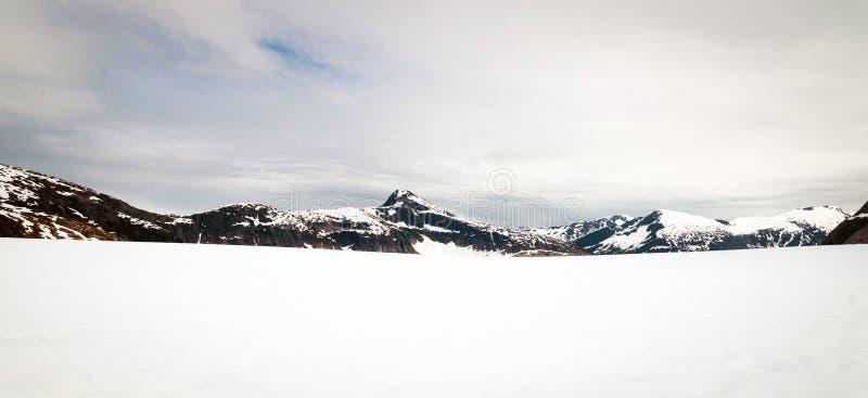 Panorama von Norris-Gletscher in Alaska stockbilder