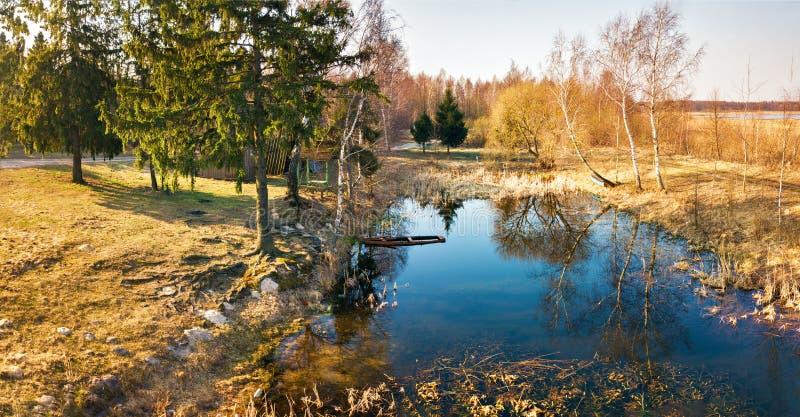 Panorama von See im Wald zur Morgenzeit stockbilder