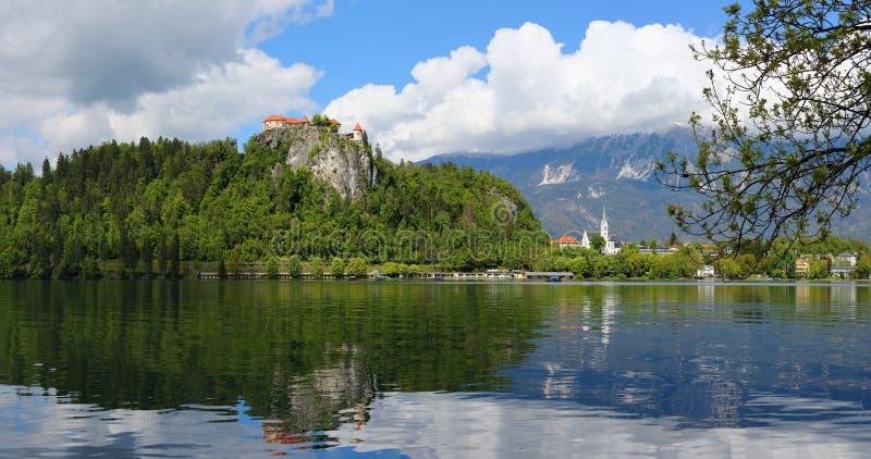 Panorama von verlaufenem See in Slowenien lizenzfreies stockfoto