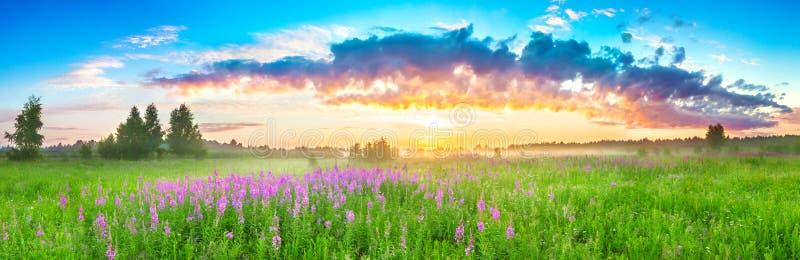 Panorama wiejski krajobraz z wschodem s?o?ca i kwitn?? ??k? fotografia royalty free