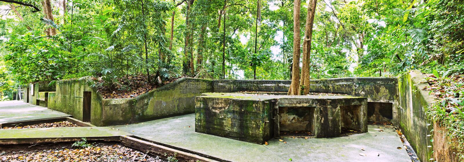 Panorama of World War II Battery in the jungle. World War 2 battery has been preserved, yet over time,the jungle has reclaimed the land, including the concrete royalty free stock photography