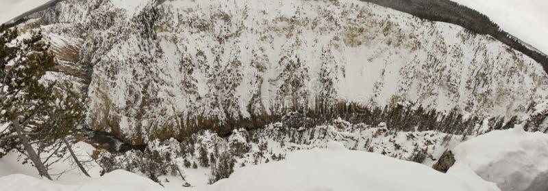 Panorama Yellowstone rzeka w Uroczystym jarze Nat Yellowstone zdjęcie stock