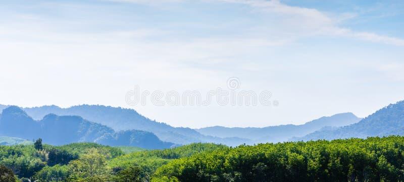 Panorama zielonego wzgórza widok górski obraz royalty free