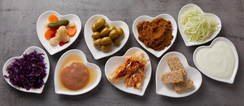 Panoramabaner av sunda jäste foods royaltyfri foto
