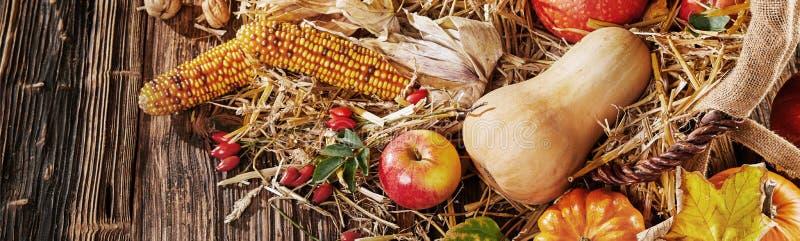 Panoramabanner für Herbstfrüchte und -pflanzen stockfoto