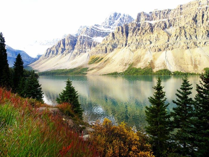 Panoramabild av den kanadensiska pilbåge sjön med många träd som är främsta i Rocky Mountains i den Banff nationalparken i Albert arkivfoto