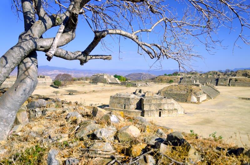 Panoramablick der großen Piazzas in Monte Alban, Oaxaca lizenzfreie stockfotos