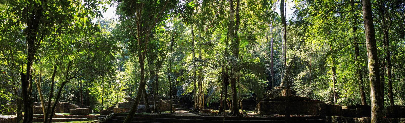 Panoramablick der Hälfte grub Ruinen, Palenque, Chiapas aus stockbild