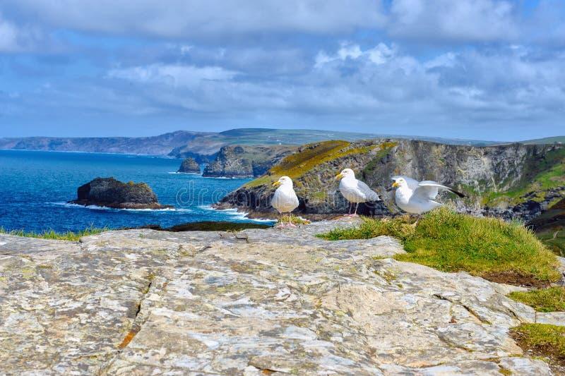 Panoramablick der schroffen Küstenlinie mit Herrn mit drei Europäern lizenzfreies stockbild
