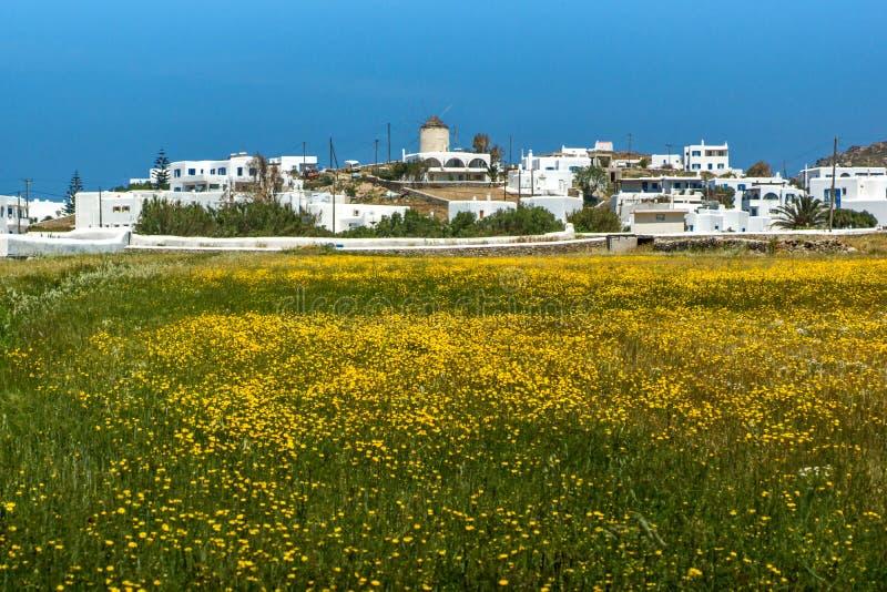 Panoramablick der Stadt von Ano Mera mit Frühling blüht, Insel von Mykonos, Griechenland lizenzfreies stockbild