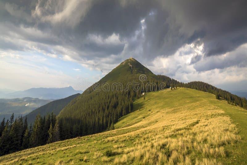 Panoramablick des grünen grasartigen Tales, der Kiefer und der ländlichen kleinen ländlichen Hütten am Fuß des entfernten waldige stockbild